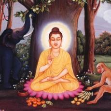 Life of Buddha Shakyamuni